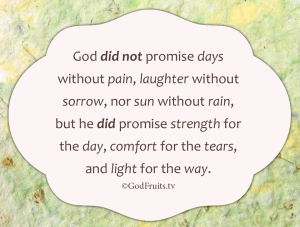 God did not promise